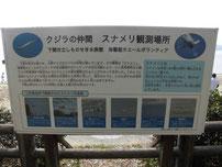 関見台公園下海岸 スナメリクジラ 看板の写真