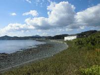 白野江 砂浜の写真