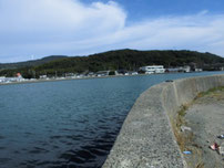 掛淵漁港 対岸の護岸の写真