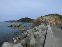 和久漁港 右側の地磯 の写真