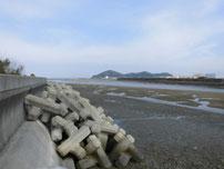 長峡川河口 左岸・下流側の写真