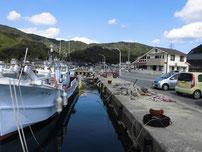 田ノ浦漁港 港内の写真
