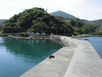 江崎漁港 はこちらからどうぞ