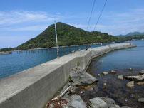 江崎漁港 波止の写真