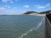 蓑島漁港 今川河口域の写真