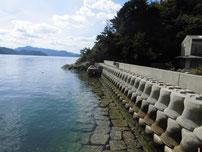 田ノ浦漁港 横の岸壁 手前側の写真