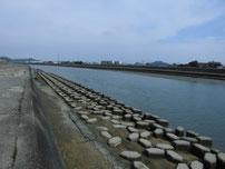 今川河口 上流 左岸側の写真