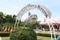 Unterwasserwelt Pattaya