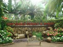 Zu den schönsten Attraktionen gehört sicherlich Nong Nooch.Es ist der Welt größter tropischer Garten und wurde mit vielen Preisen ausgezeichnet.