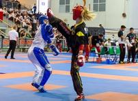 Foto Kickboxer