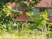 Das Seminar-Haus in Fischbeck versteckt hinter einer grünen Obstplantage