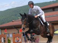 Stall Weber Messen - Pferd Ermanita vom Heudorf