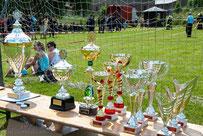 06.07.2013 Stadtmeisterschaften im Löschangriff Schallenburg