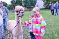 13.09.2014 Hoffest auf der Alpakafarm