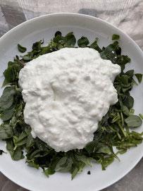 Portulak mit Joghurt