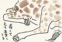 キリンの脚