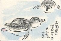 泳ぐ コガタペンギン