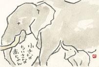 アフリカゾウ 親子