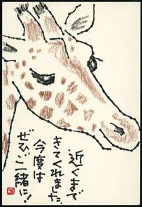 キリン 顔のアップ