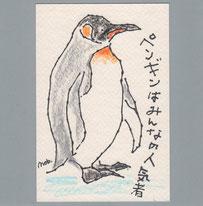 キングペンギン 人気者