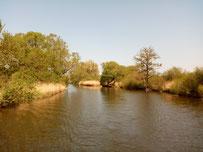 zwischen Kummerower See und Malchin