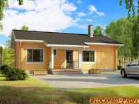 Kleines Blockhaus Bungalow für Paare oder kleine Familie