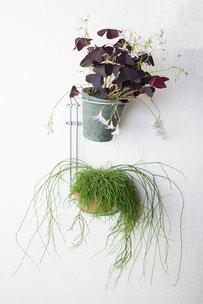 Affaldssortering i et køkken til et skab med affaldstativ fra affaldssorteringssystem Flower, som planteholder