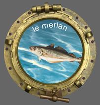 Le club de pêche en mer SMPP 66470 dans le 66 aime pêcher le merlan et partager les techniques de pêche.