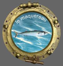 Le club de pêche en mer SMPP 66470 aime pêcher le maquereau.