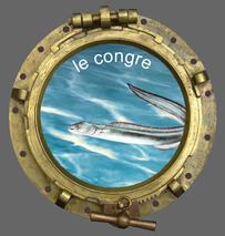 le club de pêche en mer smpp 66470 prélève aussi des congres.