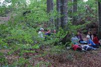 Kinder draussen im Wald