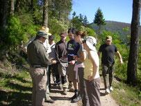 Clases prácticas en curso sobre ordenaciones forestales en Besullo