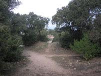 Den richtigen Weg finden ©B.Armitstead