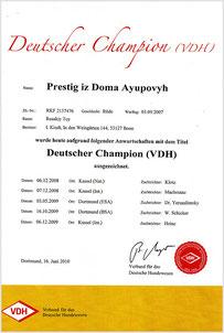 """Urkunde """"Deutscher Champion (VDH)"""" im Jahr 2010"""
