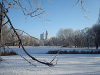 Leipzig im Winter Blick auf Johannanpark und Neues Rathaus
