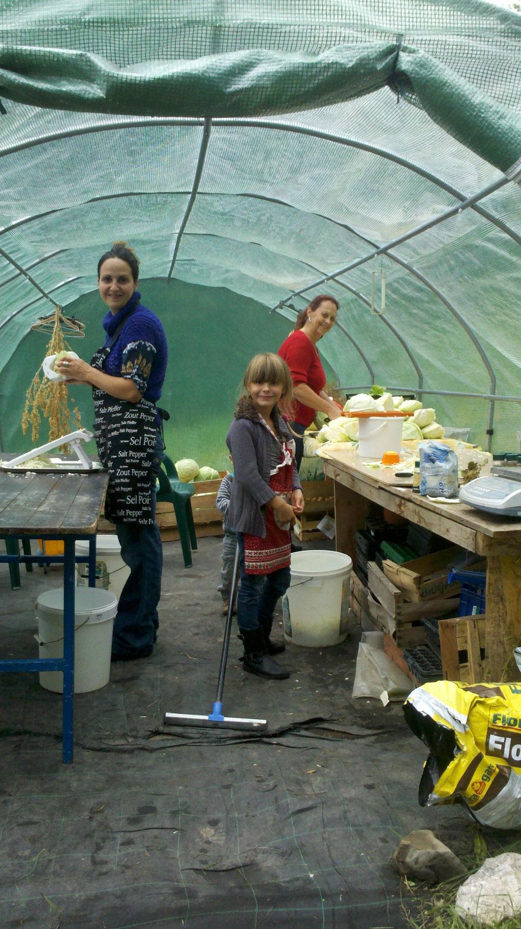 Atelier choucroute