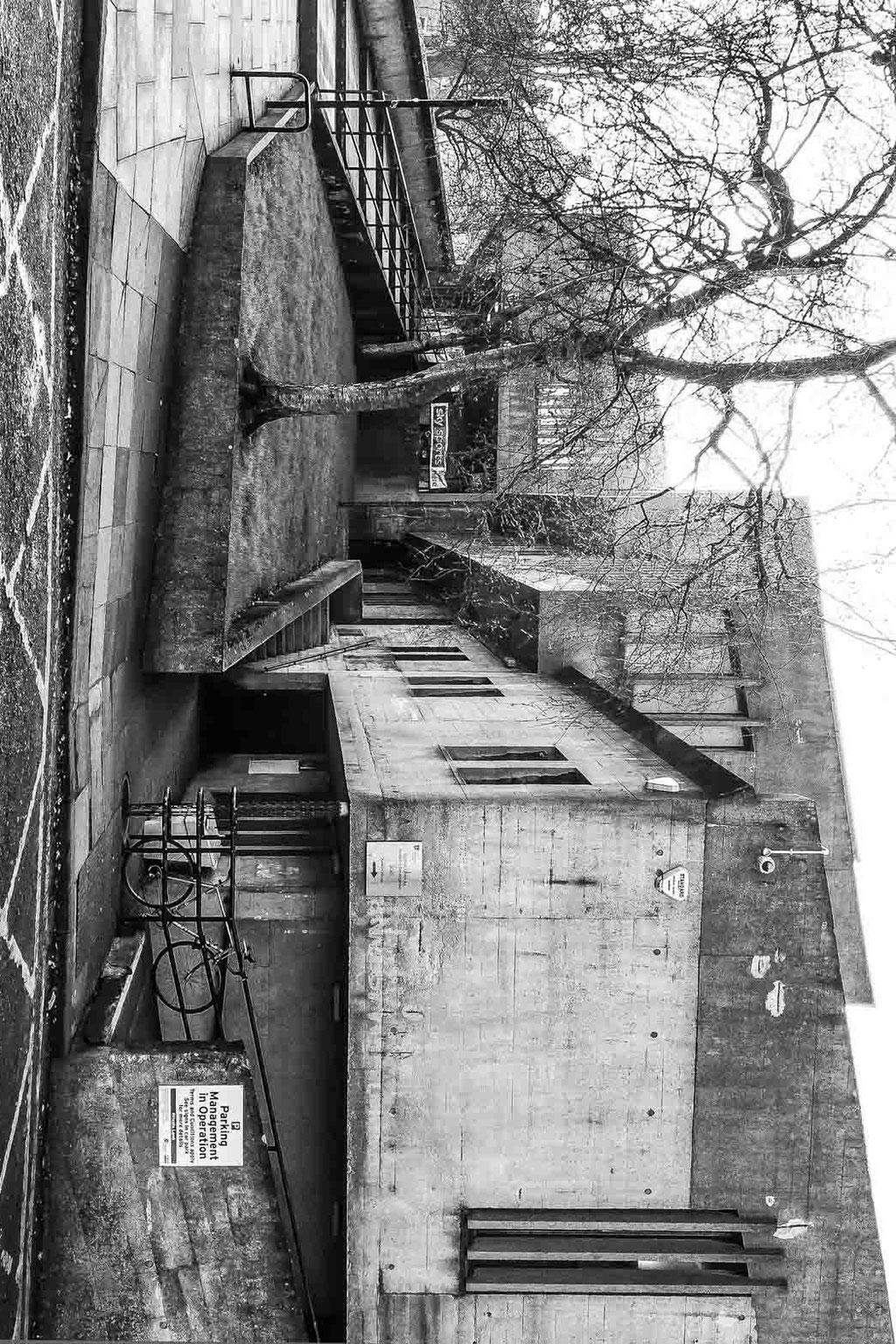 Dunelm House, Durham University (Ove Arup & Partners), Durham (UK)