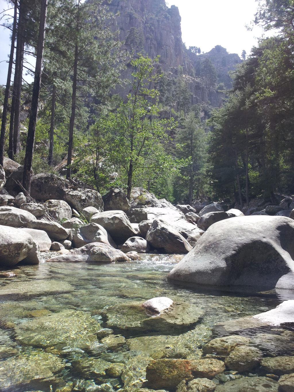 Bild: Abenteuer Wandel, Tiefe Ökologie, Natur, Stille, Meditation