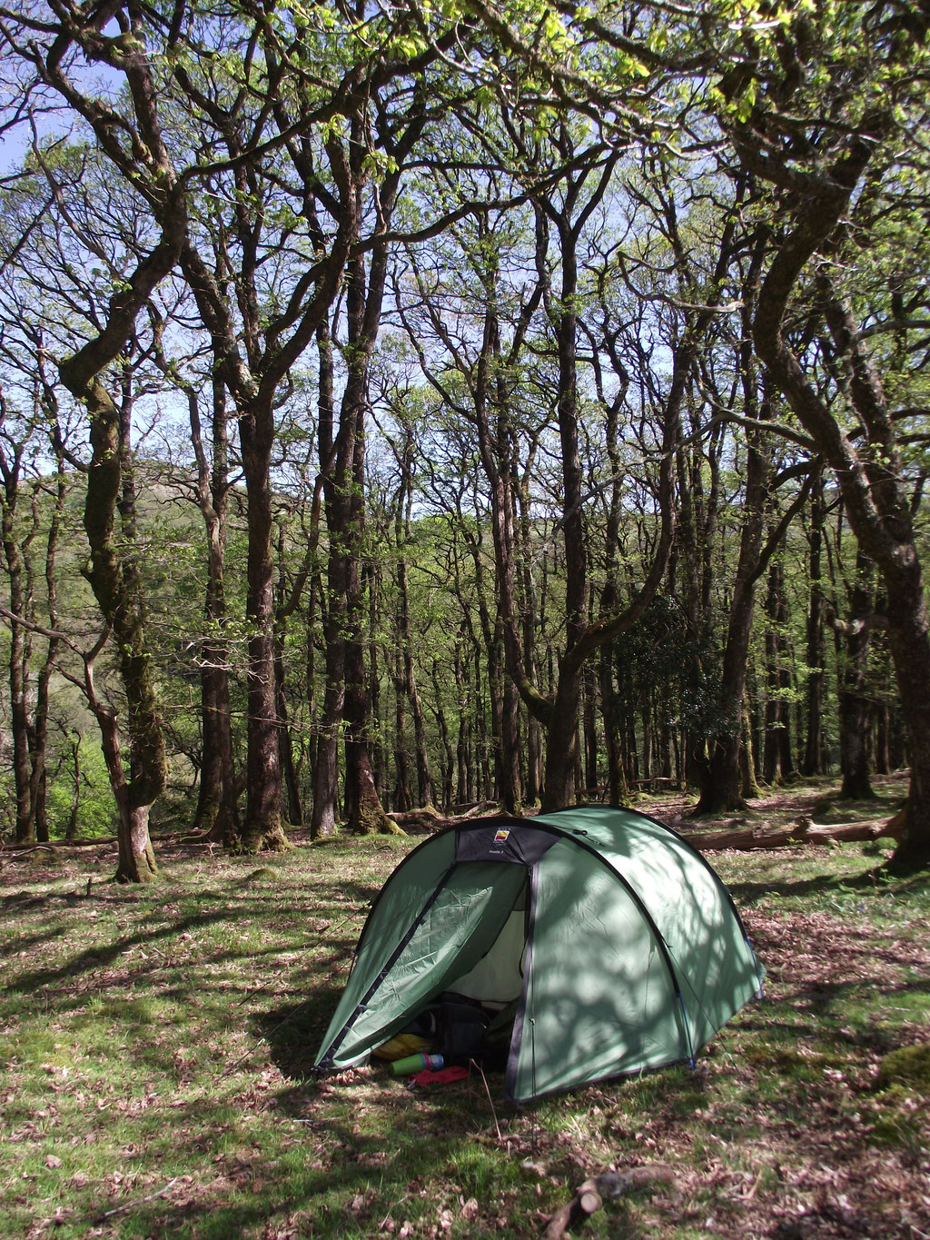 Camping, Dartmoor, Devon, England, UK