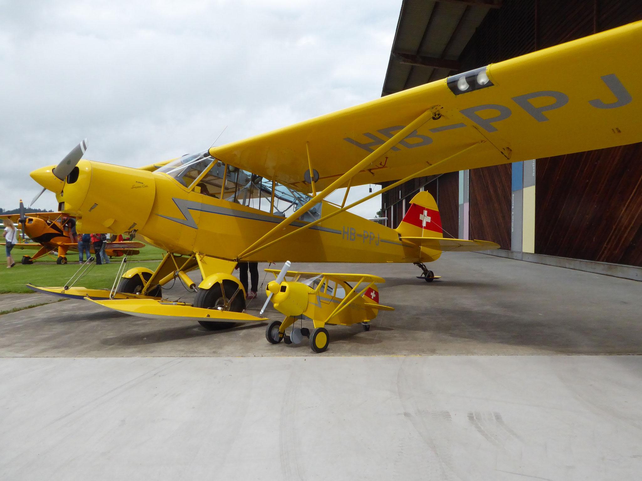 Super Cup mit Pedal Plane