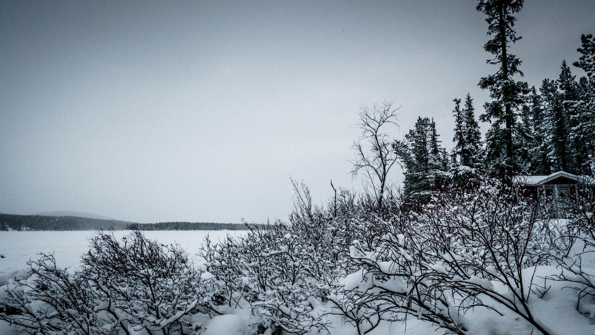 15.12.2020 gegen 12 Uhr  Schneefall
