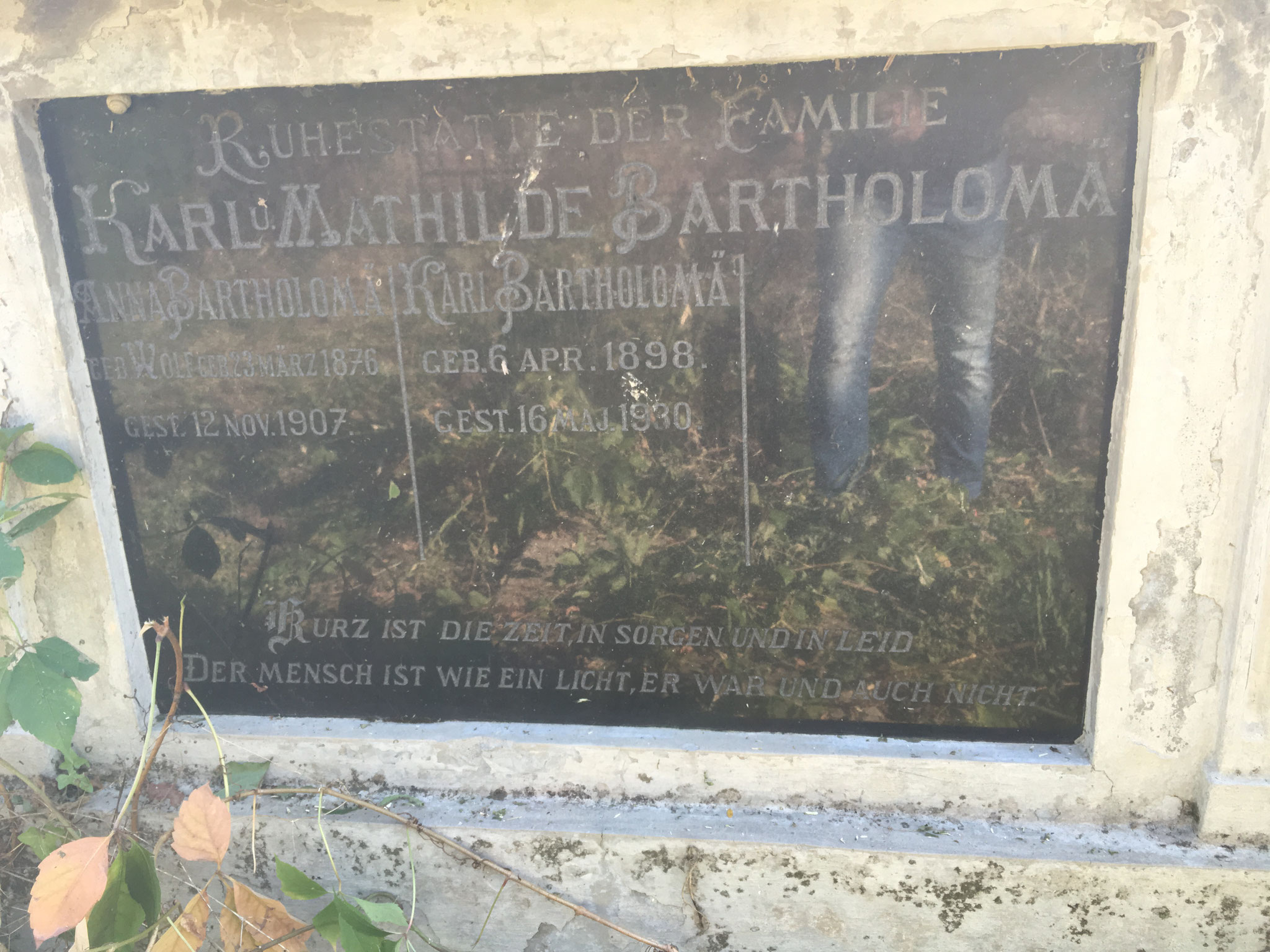 Bartholomä