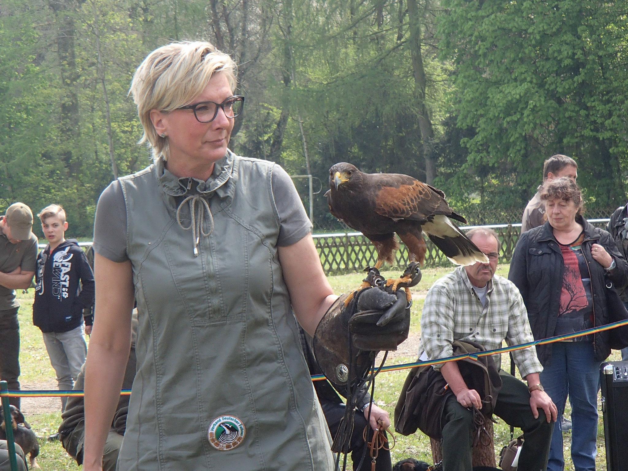 Falknerin Jana Halitaj präsentiert einen Wüstenbussard