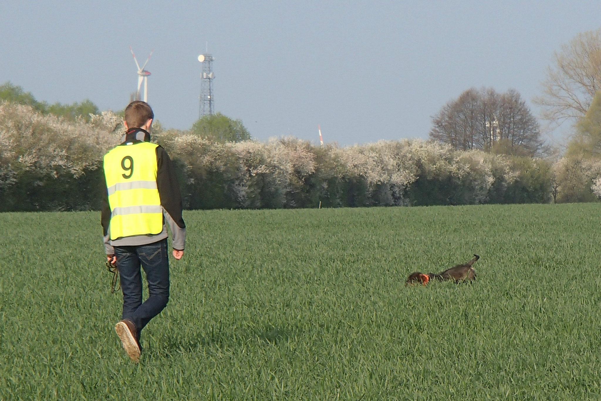 Der jüngste Hundeführer war Hendrik mit Rudi vom Calvörder Land.