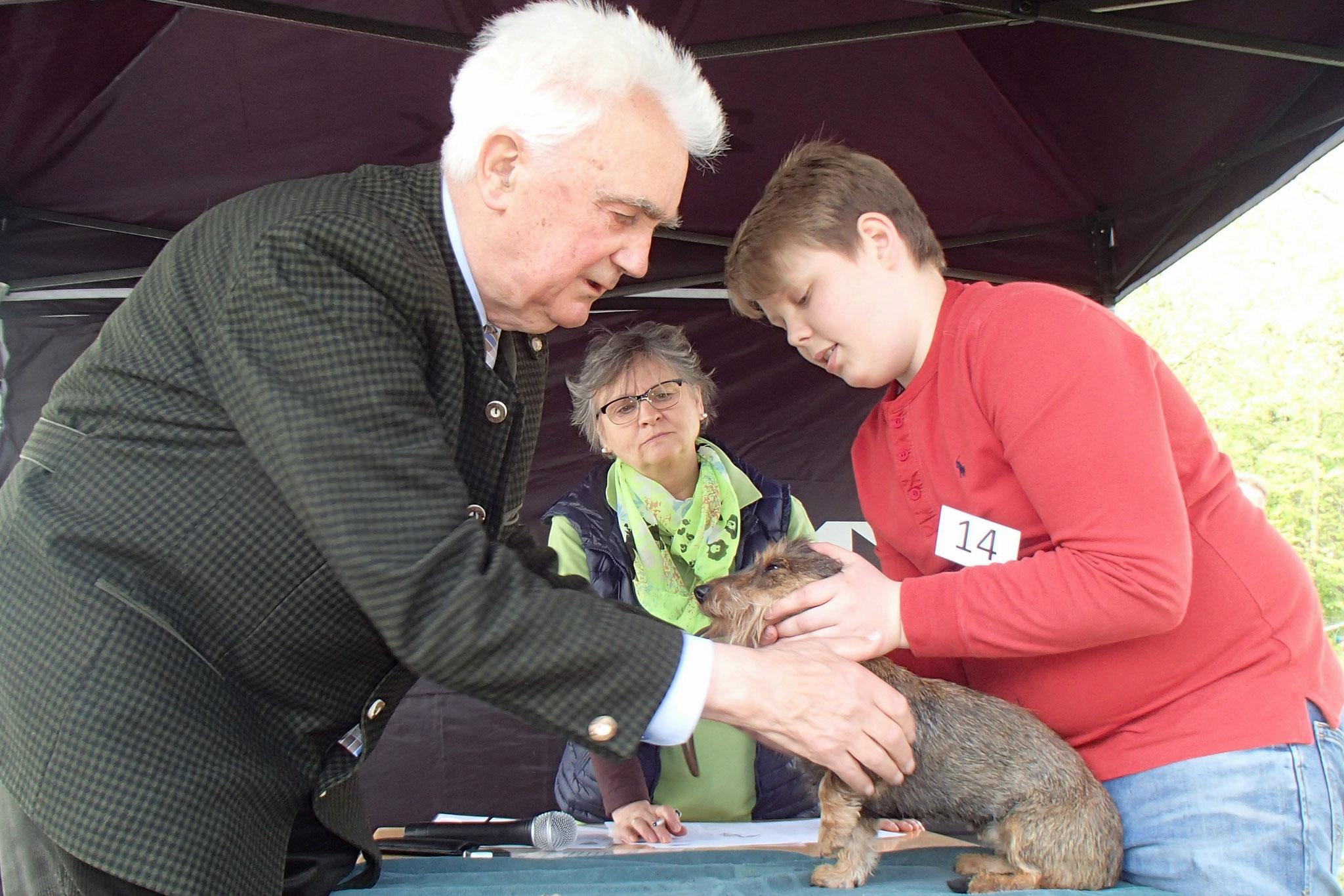 Moritz Reinecke aus Haldensleben präsentiert seine Kaninchenteckelhündin Frieda.