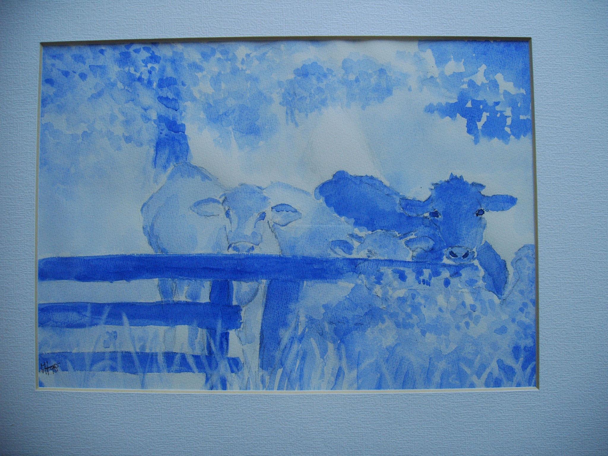 Blauwe Koe, € 350,-
