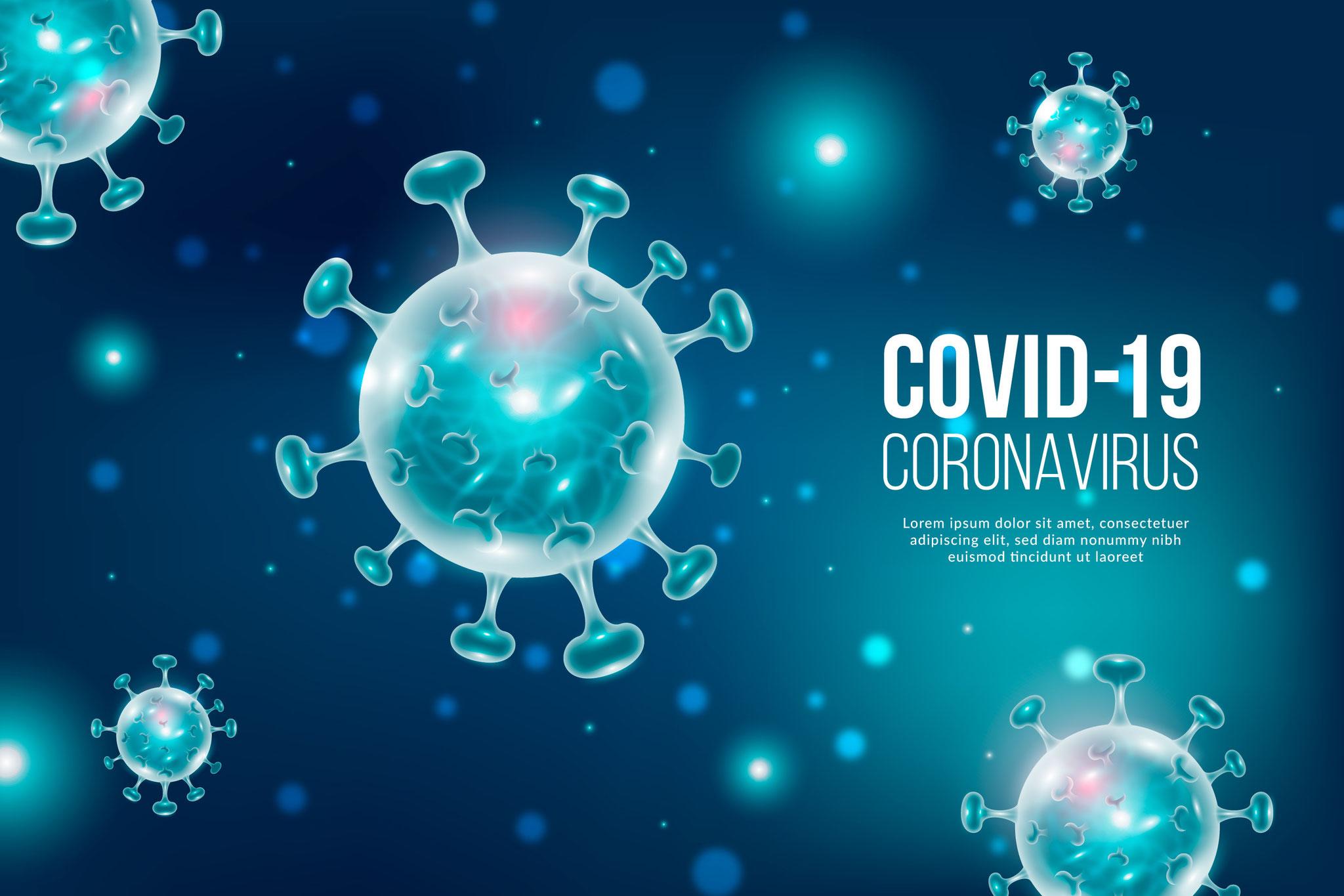 COVID-19 2020 el año de la epidemia.