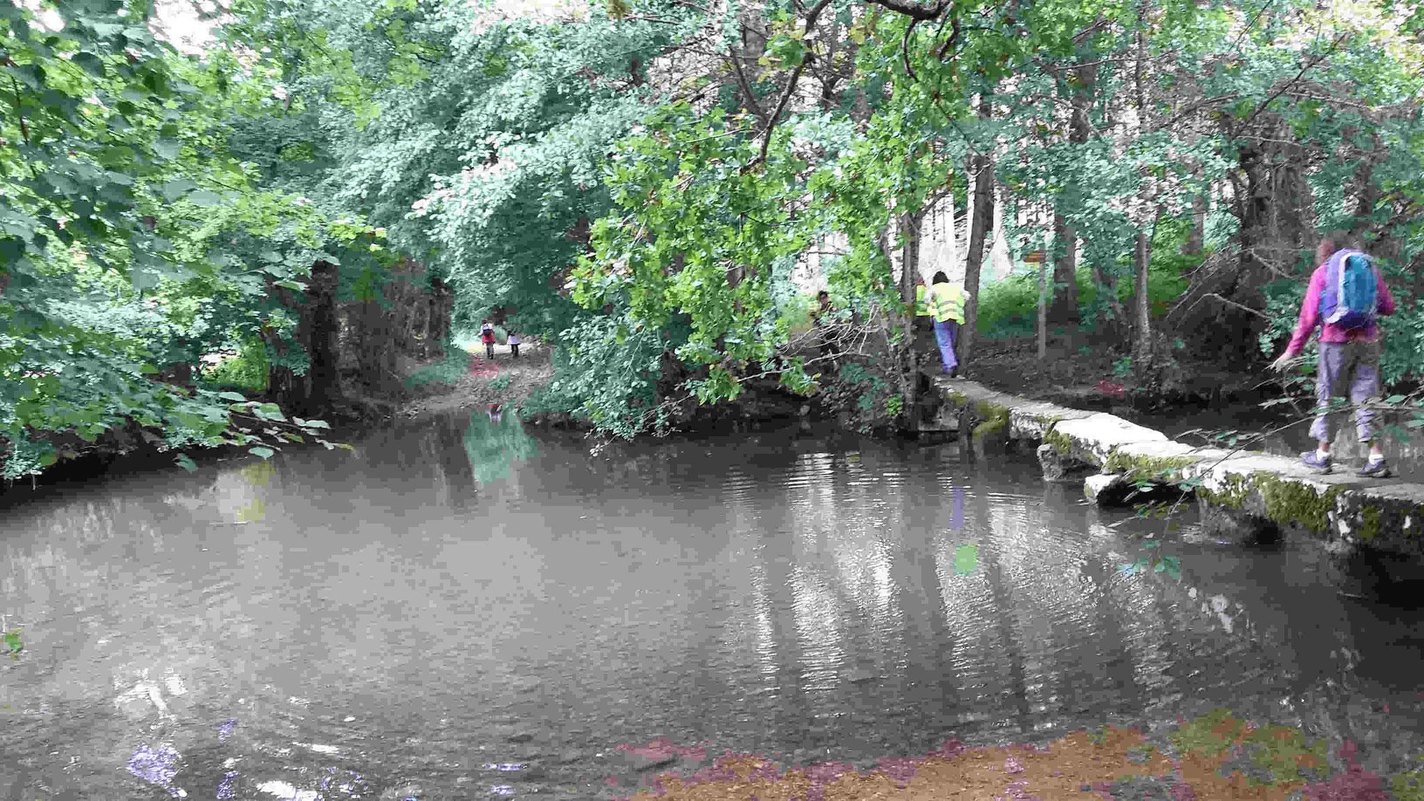 Un pont sur le Salleron