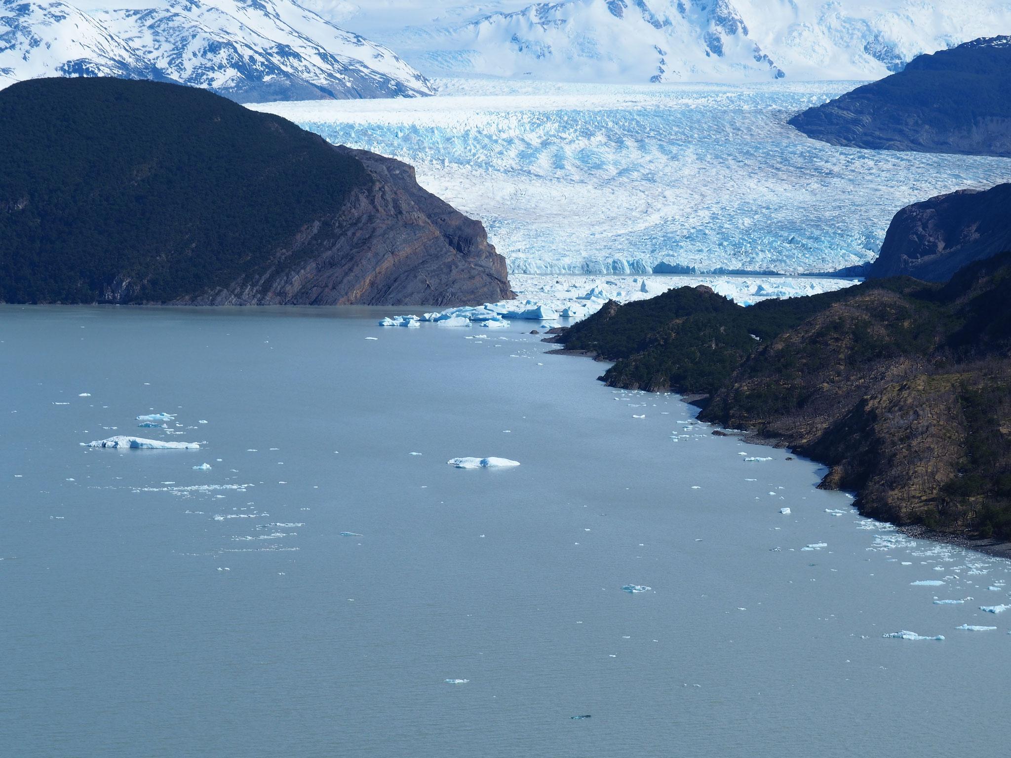 Der Gletscher Grey in seiner vollen Pracht