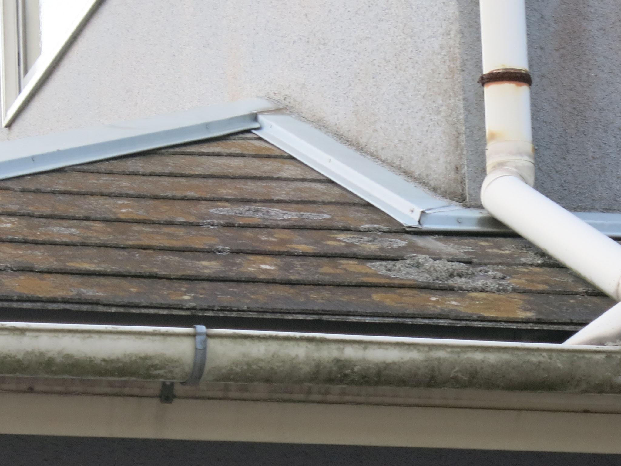 屋根(コロニアル)/コケ、汚れの付着